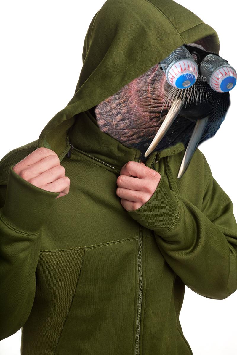 mens-poly-tech-zip-hoodie-sweatshirt-olive-hood
